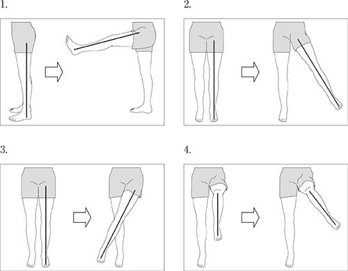 の 運動 股関節